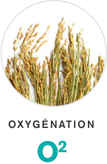 Oxygénation